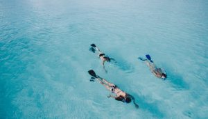 cham islands snorkeling day tour