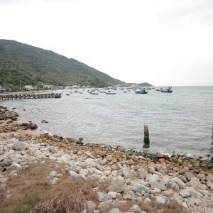 The best time to explore Cham Island is from March to August
