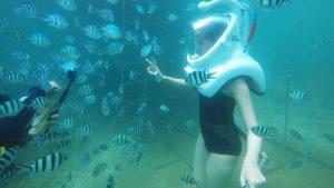 cham island walking underwater